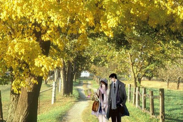 """""""Bên nhau trọn đời"""" là truyện ngôn tình hiện đại Trung Quốc rất hay và lãng mạn"""